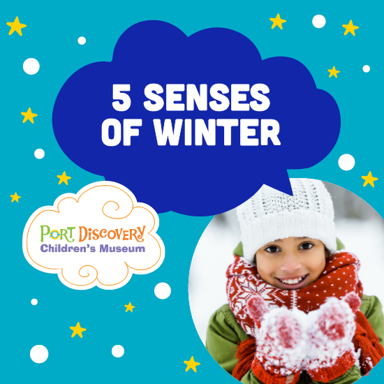 5 Senses of Winter