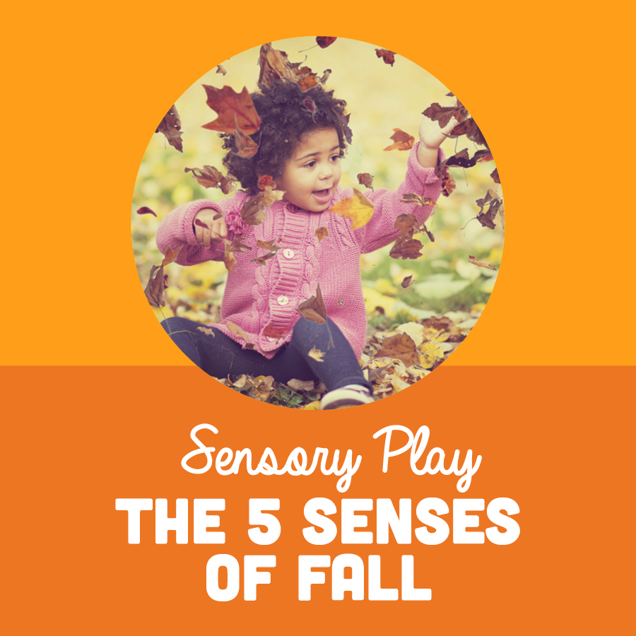 The 5 Senses of Fall