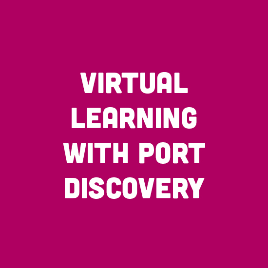 Virtual Learning with Port Discovery