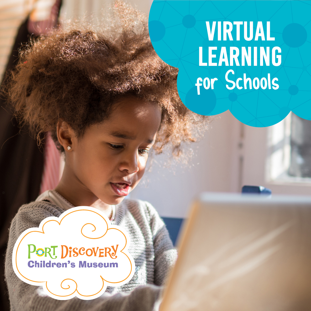 Virtual Learning for Schools
